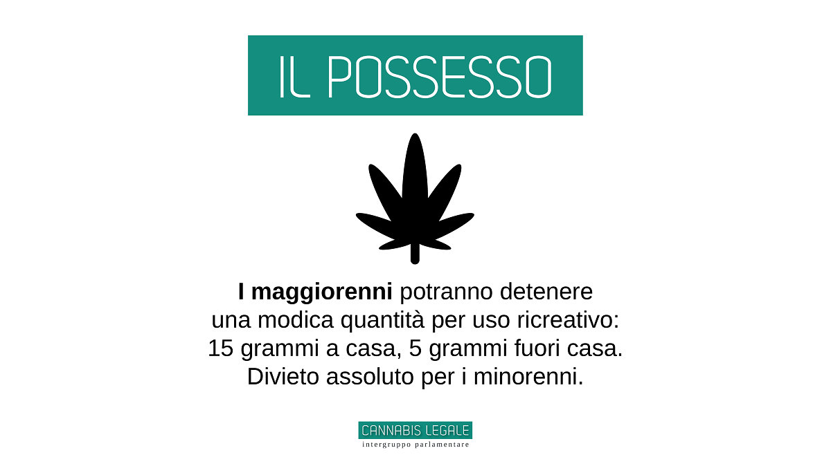 In Italy 218 MPs want to legalize cannabis