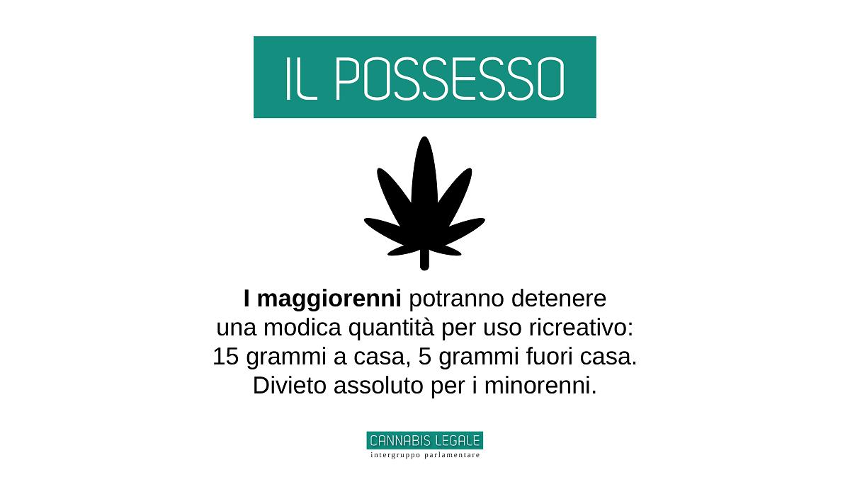 Intergruppo legalizzazione cannabis: il possesso
