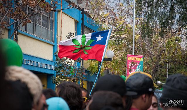 Droghe: il Cile depenalizza l'uso personale di cannabis