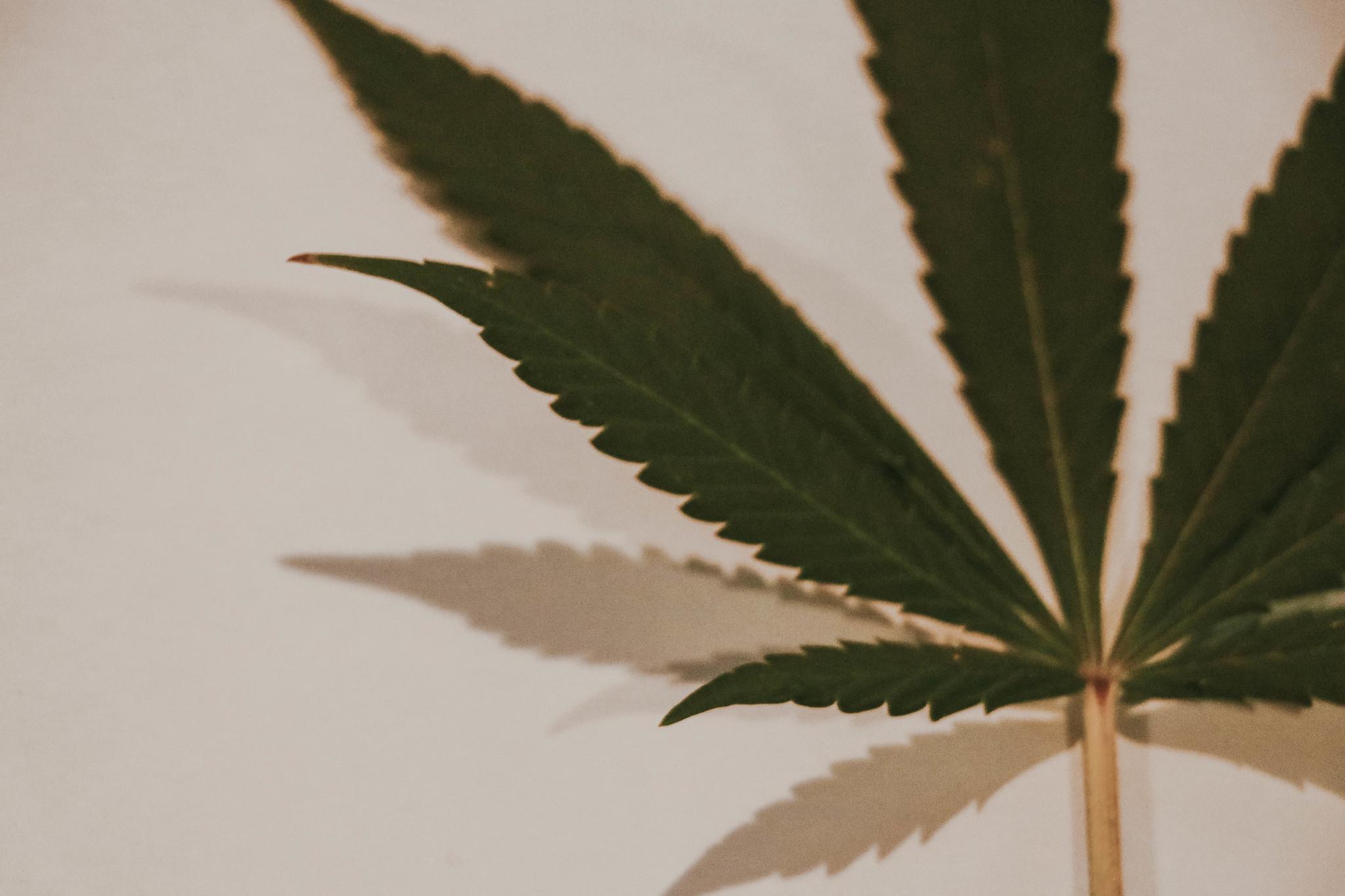 La necessità di abbandonare l'approccio ideologico sulle droghe