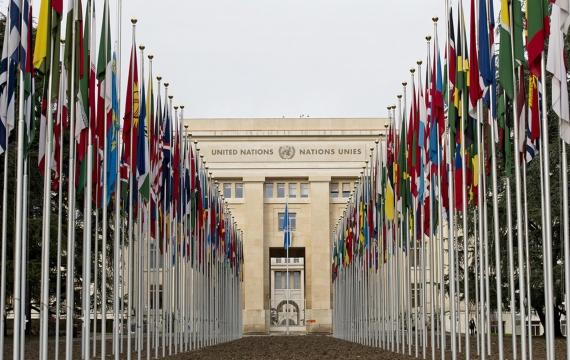 Tortura, stepchild, Rom e migranti – l'ONU richiama l'Italia