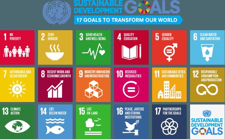 I Sustainable Development Goals sono stati definiti dalle Nazioni Unite nel 2015