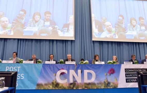 I lavori della 61esima CND e il ruolo della società civile