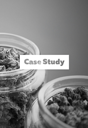 Case study cannabis medica